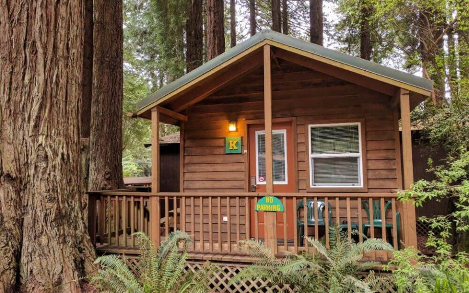 Emerald Forest Cabins & RV - cabins