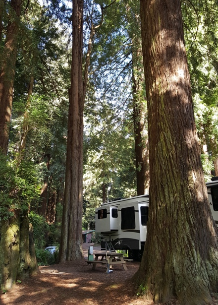 Good Sam RV Park In Trinidad Northern California