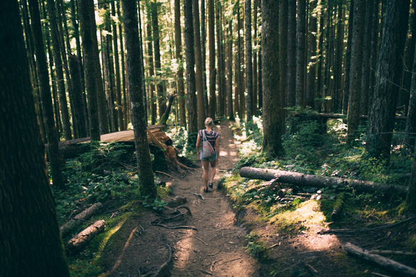 Hiking Trinidad CA | Hike From Forest to Shoreline