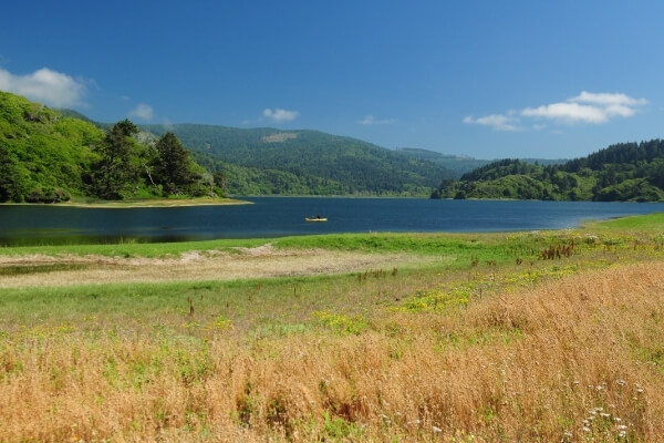 Humboldt Lagoons State Park   Wetlands